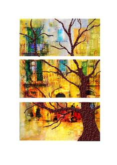 Landscape,Nature,Tree,Shded Tree