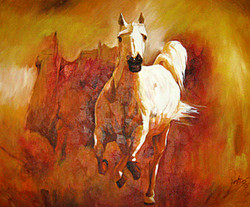 horse, white horse, white running horse, white horse with brown background
