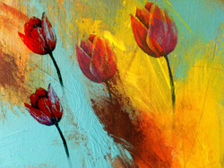 Flower,Red Flowers,Floral,Bouqute