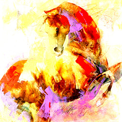 Horse,Red,Pink Shades,Horses,Ridder,Speed