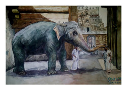 Blessing Elephant - Handpainted Art Painting - 12in X 09in