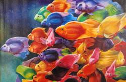 Fish,Sea Life,Water Life ,Aqua Life