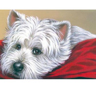 Westie Note Cards Toto On Red Pillow