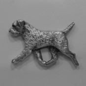 Border Terrier Pin Gaiting