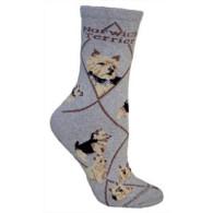 Norwich Terrier Socks Grey