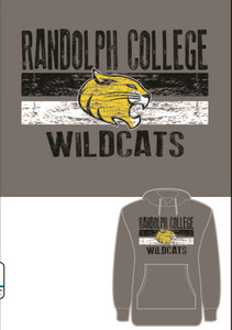 Randolph College Raglan Hooded Pullover in Nickel
