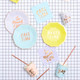 Pastel mix caption plates for  birthday parties, tea parties and hen dos