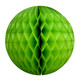 Green Tissue Paper Honeycomb Ball Pom Pom Decoration
