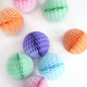 Pastel Tissue Paper Honeycomb Ball Pom Pom Decoration