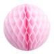 Light Pink Tissue Paper Honeycomb Ball Pom Pom Decoration for Princess Parties