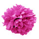 Dark Pink tissue paper pom pom decoration for birthday parties, weddings, hen dos and baby showers