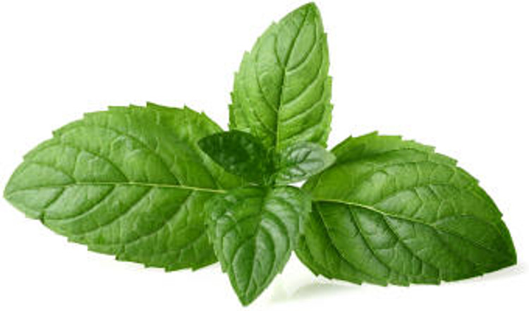 Peppermint Leaves
