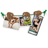 Sloths On A Vine Picture Hangers
