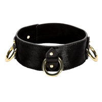 3 D-Ring Collar