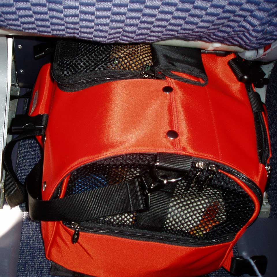 A Miniture Pinscher inside a large size Celltei Backpack fits  underneath an airplane seat