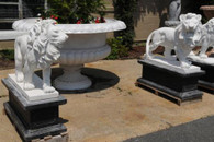 PAIR OF SOLID MARBLE STANDING LIONS ON BASES,