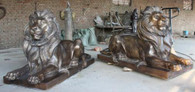 MARVELOUS PAIR OF LARGE LAYING LIONS IN BRONZE, CUSTOM DESIGNS AVAILABLE Each lion measures: 71 long x 43.5 tall x 29.5 wide.