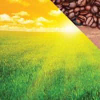 Reminisce The Breakfast Club 12x12 Paper: Rise & Shine