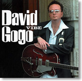 """Vibe"" blues CD by David Gogo"