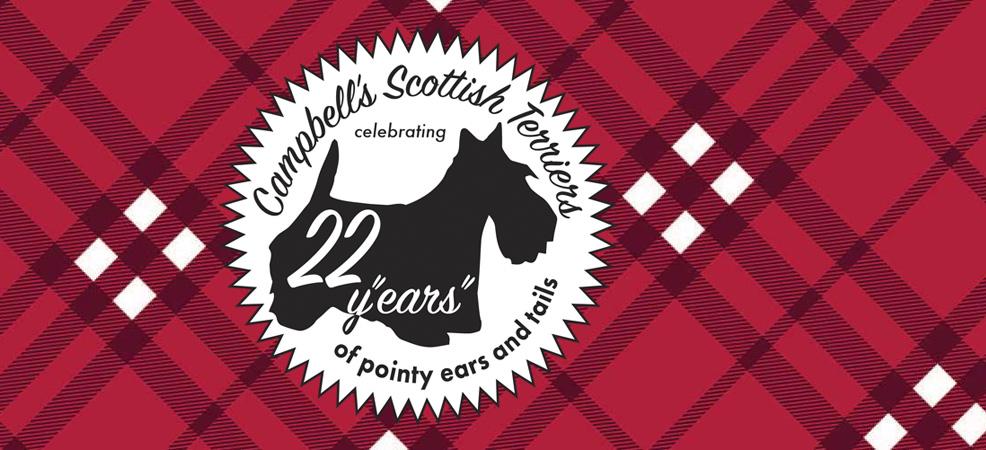 Celebrating 22 Years