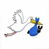 Stork with Boy Scottie Birth Announcement