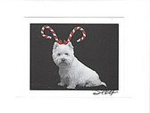 Westie Candy Canes Photo Card