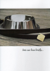 Collar and Bowl Dog Sympathy Card