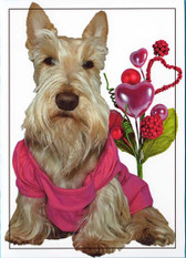 """A Wheaten Valentine"" Card"