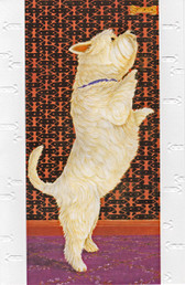 Westie Catching a Treat Card