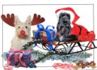 Sleigh Ride Christmas Card