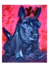 Scottie Abbey Puppy Card