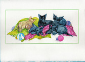 Nap Time Scottie Card