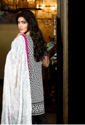 Firdous Premiere Embroidered Chiffon Dupatta Collection Design 2B