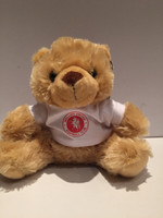 Welling United Teddy Bear by Ascar. Available now from Andreas Carter Sports.