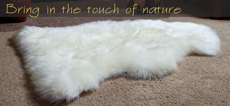 single-pelt-ivory-rug-banner.jpg