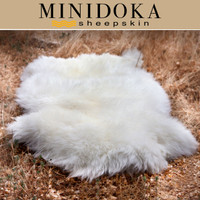 minidoka divorced singles Rupert, id city data rupert, id is a city with great restaurants, attractions, history and people there are around 5,645 people who live in rupert and approximately 20,174 who live in.