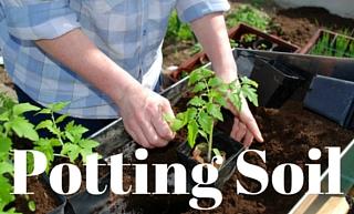 potting-soil.jpg