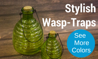 wasp-traps.png
