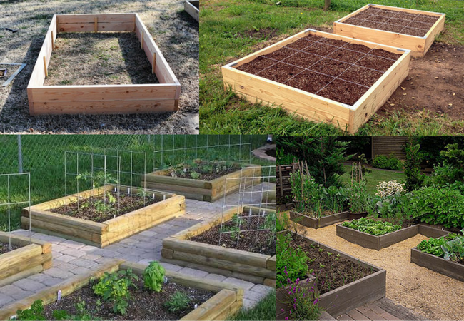 Build A Raised Bed Garden The Ultimate Guide Great Garden Supply