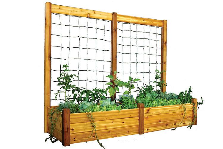Gronomics Raised Garden Bed 34x95x19 With 95x80 39 39 H Trellis Kit