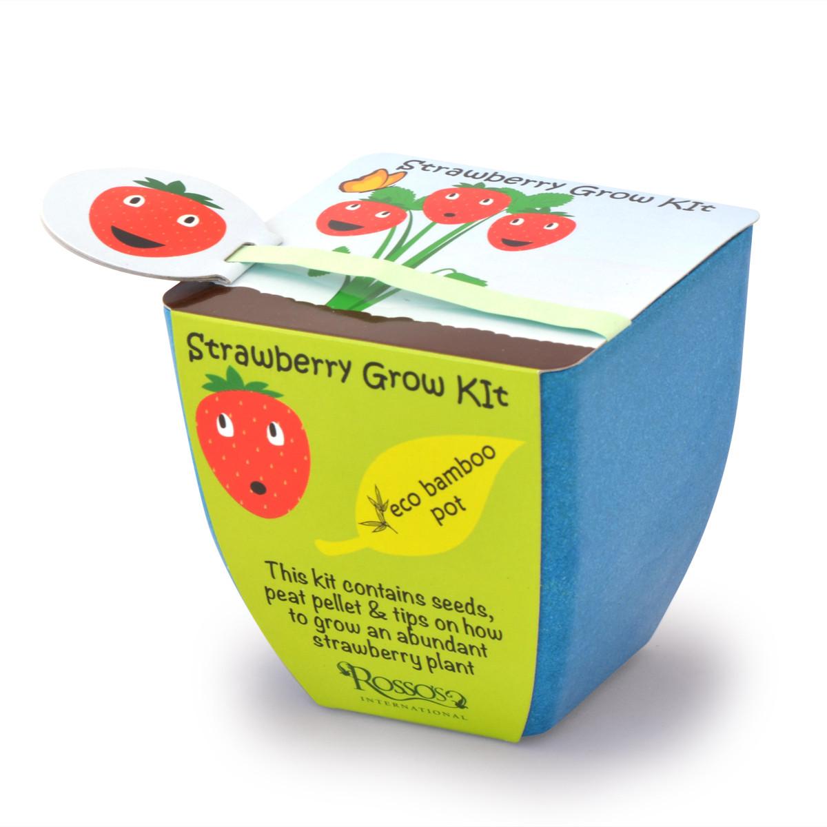 Rosso 39 s strawberry grow kit children 39 s kit for Gardening kit for toddlers