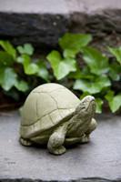 Campania Stone box turtle statue.