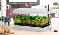 Complete Self-Watering Indoor Garden