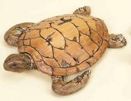 Driftwood Look - Sea Turtle