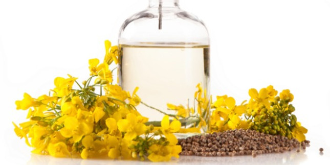Benefits of Canola Oil for Natural Hair