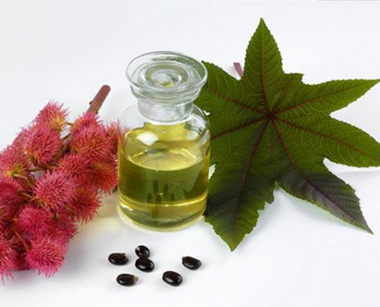 Benefits of Castor Oil for Natural Hair
