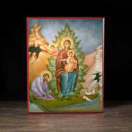 """Theotokos """"the Burning Bush"""" (Clark) Icon - T144"""