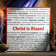 Christ is Risen - W108