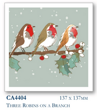 2017 Christmas cards - Three Robins (10pk)
