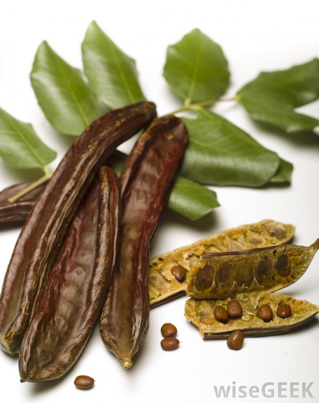 Carob is safe for pets to eat